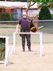K-9 Unit Training